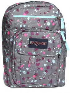9685badafb3e Jansport Fashion Backpack For Women - Multi Color