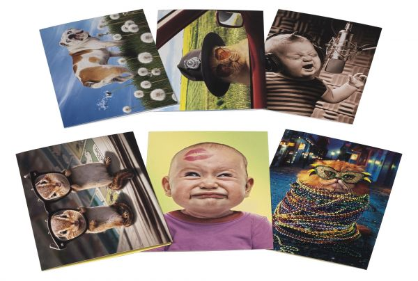 Avanti Birthday Card Collection Its Your Birthday 12 Count