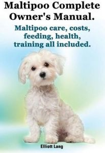 2bf89a2b2e1000 Maltipoo Complete Owner s Manual. Maltipoos Facts and Information. Maltipoo  Care