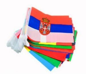 08616cdf5 8.5M 2018 FIFA World Cup Top 32 String Flag Banners International Flag  Bunting for Bar Party Decorations (32 Countries Flags)