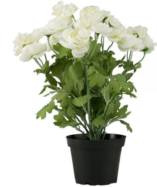Artificial Ranunculus Flowers For Multiple Occasions White Souq