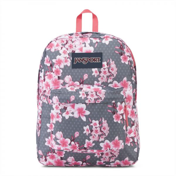 e304cde44 Jansport Backpacks: Buy Jansport Backpacks Online at Best Prices in ...