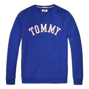 83a2d114c Tommy Hilfiger Pullover for Men - Blue