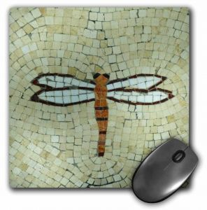 Beautiful Dragonfly Themed Robert Ichter Art 11.25 x 11.25 Inches 85501 Tree-Free Greetings EcoArt Home Decor Wall Plaque