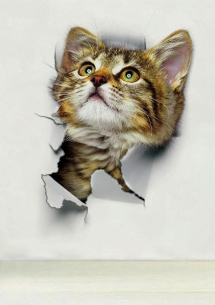 3d Wallpaper For Cute Cat Ksa Souq