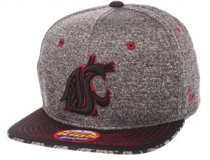 the best attitude 7414f 7dff6 ... czech zephyr ncaa washington state cougars children boys prodigy youth  snapback hat youth adjustable gray team