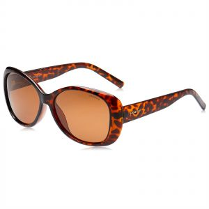 1494dfa6ba Polaroid Butterfly Sunglasses for Women - Brown