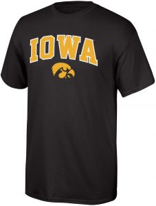 97e3001fd69 Elite Fan Shop NCAA Iowa Hawkeyes Mens NCAA T Shirt Team Color ArchNCAA T  Shirt Team Color Arch